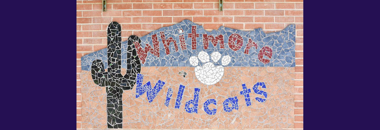 We are the Whitmore Wildcats!