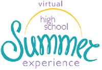 Virtual Summer Experience