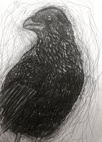 A charcoal drawing of a raven