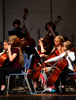photo of student orchestra