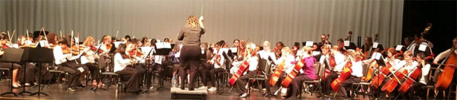 Photo of All-State Orchestra